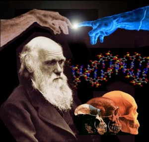 evolucion-darwin